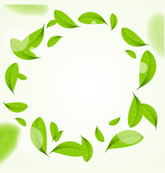 Realistic green leaves circle frame background vector