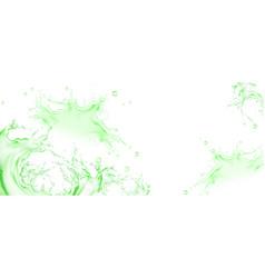 Realistic splash green tea or lime juice vector