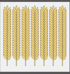 set wheat ears sketch cereal for bakery and vector image