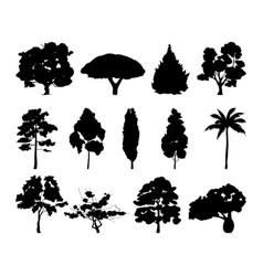 monochrome of different trees vector image vector image