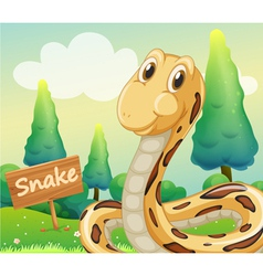 a snake beside a wooden signage vector image
