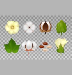 cotton realistic transparent icon set vector image