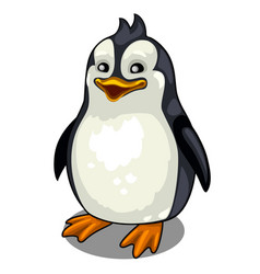 One smiling penguin on white background vector