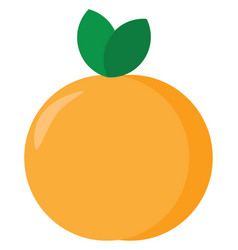 Peach on white background vector
