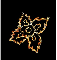 Stylized fire flower on black vector image