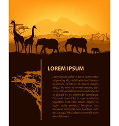 African design template vector image vector image