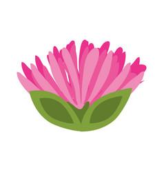 pink flower spring image vector image