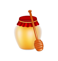 sweet honey in jar and wooden honey dipper vector image vector image