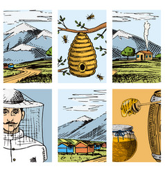 apiary farm cards hand drawn vintage honey vector image