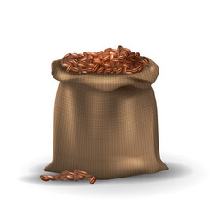 coffee beans in brown burlap bag vector image