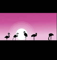 Collection stock of flamingo at sunset scene vector