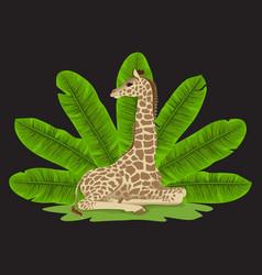 Giraffe and banana fan print vector