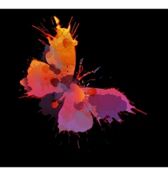 Colorful splashes butterfly vector image vector image