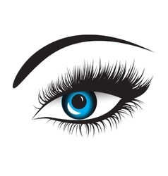 blue eyes with long lashes vector image