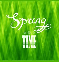 Spring lettering design green banner vector