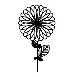 Figure flower with some petals icon vector