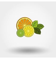 fresh fruit and mint vector image