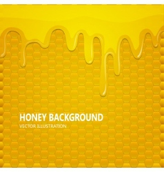Honeycomb with honey background vector image