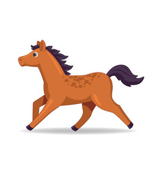 mustang horse animal standing on a white vector image