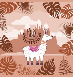 Set of cute lamas floral ornament background vector