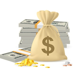 Piles of money vector image