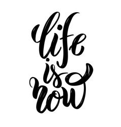 life is now hand drawn motivation lettering quote vector image