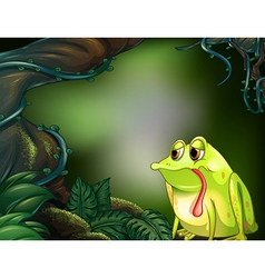 A hungry frog in the rainforest vector image vector image