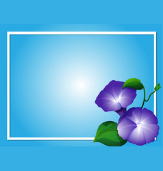 Blue background template with morning glory vector