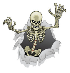 cartoon skeleton character out from broken vector image