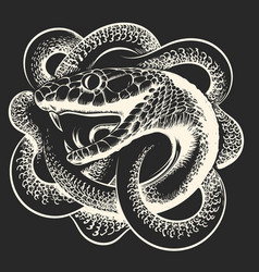 Coiled snake hand drawn vector