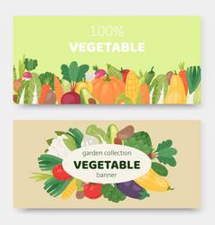 garden eco vegetables banners vector image