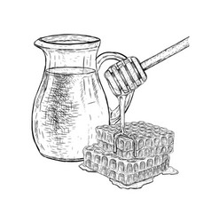 hand drawn set of milk and honey sketch vector image