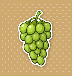 Sticker a bunch grapes with oval green berries vector