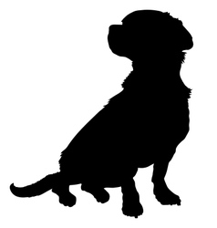 Mixed Breed Silhouette vector image
