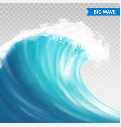 big wave on transparent background vector image vector image