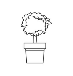 plant pot tree natural decoration outline vector image vector image