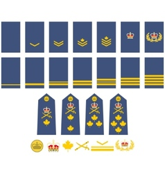 Canadian air force insignia vector