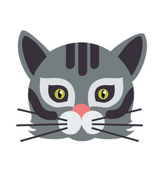 cat animal carnival mask wild or home feline vector image vector image