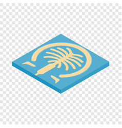 Artificial islands in dubai isometric icon vector