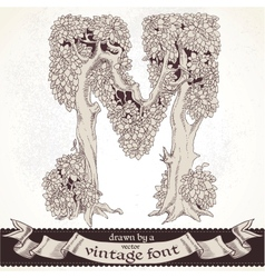 Fable forest hand drawn a vintage font - m vector