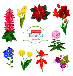Flower icon of spring garden flowering plant vector