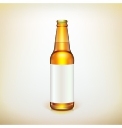 Glass beer brown bottle and label Product packing vector