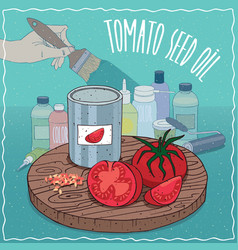 Tomato seed oil used for paint manufacture vector