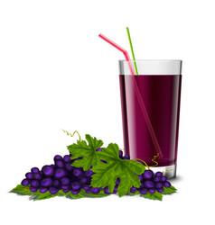 Grape juice glass vector image