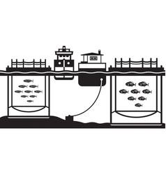 sea cage fish farming vector image