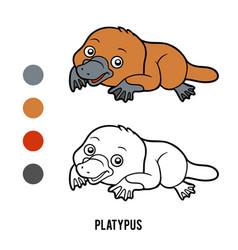 coloring book platypus vector image