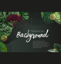Dark green tropical background monstera palm vector