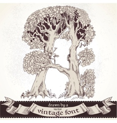 Fable forest hand drawn by a vintage font - A vector