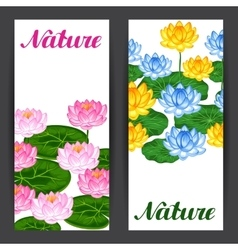 Natural banners with lotus flowers and leaves vector
