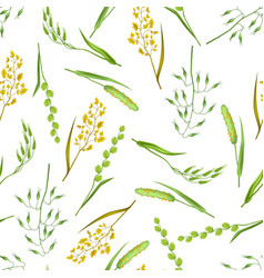 seamless pattern with herbs and cereal grass vector image